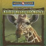 Animal Heads and Necks