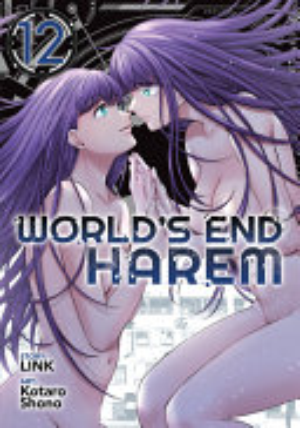 World s End Harem Vol  12
