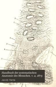 Handbuch der systematischen Anatomie des Menschen  v  2  1873 PDF