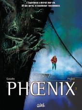 Phoenix T03: Naufragés