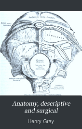 Anatomy, descriptive and surgical