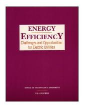 Energy Efficiency: Challenges and Opportunities for Electric Utilities