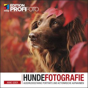 Hundefotografie PDF