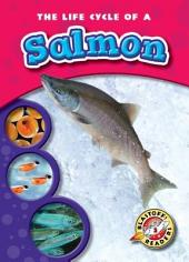 Life Cycle of a Salmon, The