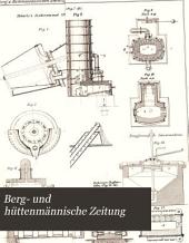 Berg- und Hüttenmännische Zeitung: Band 41