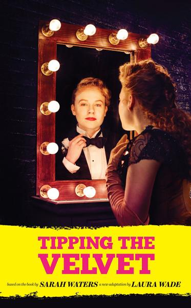 Download Tipping the Velvet Book
