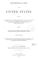 Statistical View of the United States PDF