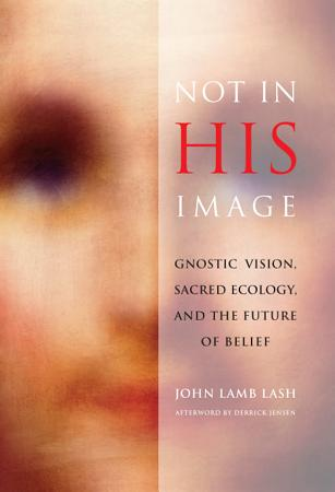 Not in His Image PDF