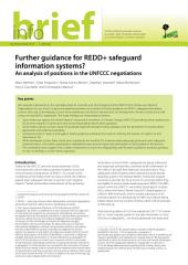 Further guidance for REDD+ safeguard information systems?: An analysis of positions in the UNFCCC negotiations