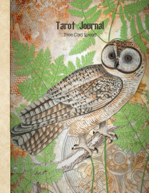 Tarot Journal Three Card Spread Reading  Owl   Beautifully illustrated 200 pages 8 5 x 11inch notebook to record your Tarot Card readings and their outcomes