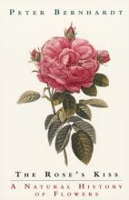 The Rose s Kiss PDF