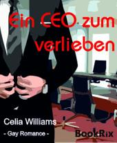 Ein CEO zum Verlieben: Gay Romance