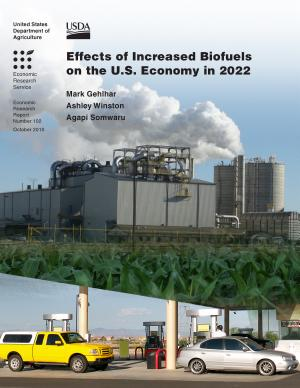 Effects of Increased Biofuels on the U S  Economy in 2022 PDF