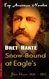 Snow-Bound at Eagle's: Top American Novelist