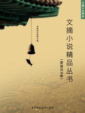 文摘小说精品丛书(套装共9册)