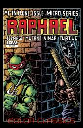 Teenage Mutant Ninja Turtles: Color Classics - Raphael Micro Series #1
