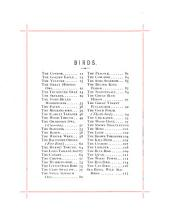 Bird-songs Translated Into Words