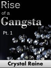 Rise of a Gangsta: (Gangsta Chronicles)
