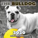 The Bulldog 2020 Mini Wall Calendar