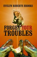 FORGET YOUR TROUBLES  Enjoy Your Life Today PDF