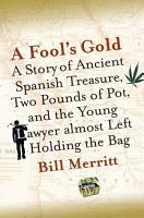 A Fool s Gold PDF