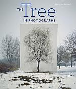 The Tree in Photographs