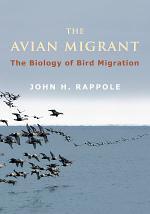 The Avian Migrant