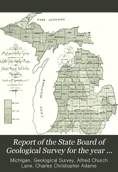 Report of the State Board of Geological Survey for the Year ...: Being the Report of, Issue 6