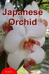 Japanese Orchid