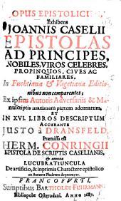 Opus epistolicum