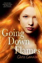 Going Down in Flames: Volume 1
