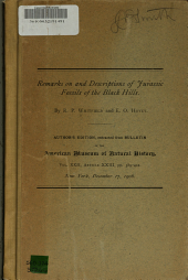 Remarks on and Descriptions of Jurassic Fossils of the Black Hills