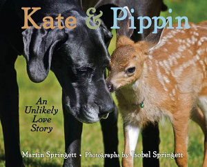Kate   Pippin