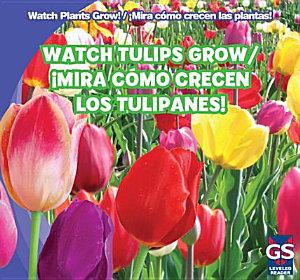 Watch Tulips Grow     Mira c  mo crecen los tulipanes  PDF