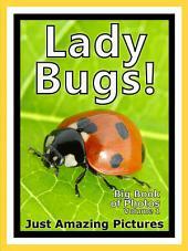 Just Ladybugs! vol. 1: Big Book of Ladybug Photographs & Lady Bug Pictures