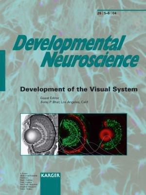 Development of the Visual System PDF