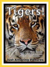 Just Tigers! vol. 1: Big Book of Tiger Photographs & Pictures