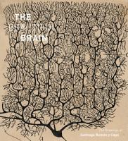 The Beautiful Brain PDF
