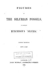 Figures of the Silurian Fossils