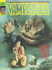 Vampirella (Magazine 1969 - 1983) #29