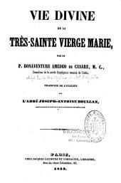Vie divine de la Très Sainte Vierge Marie: abrégé de la Cité mystique de Marie de Jésus d'Agreda