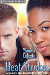 Heat Strokes - A Sexy Interracial BWWM Romance Short Story from Steam Books