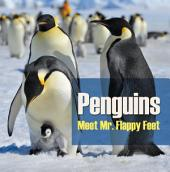 Penguins - Meet Mr. Flappy Feet: Penguin Books for Kids