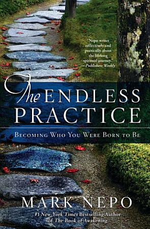 The Endless Practice PDF