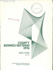 County Business Patterns: New York, Volume 3
