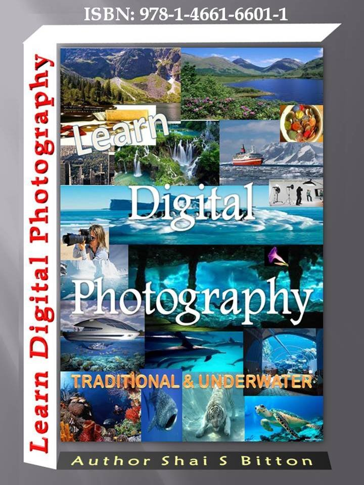 Learn Digital Photography - Traditional and Underwater