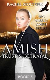 Amish Trust and Betrayal: Amish Romance Fiction (Amish Country Christian Books)