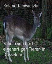 Fabeln von weißen Tigern und Drachen in Düsseldorf