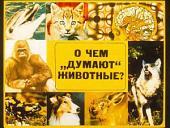 """О чем """"думают"""" животные (Диафильм)"""