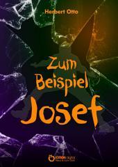 Zum Beispiel Josef: Roman